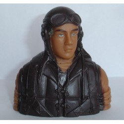 PILOT WW II 1/6 BROWN (T-MAX 02303C)